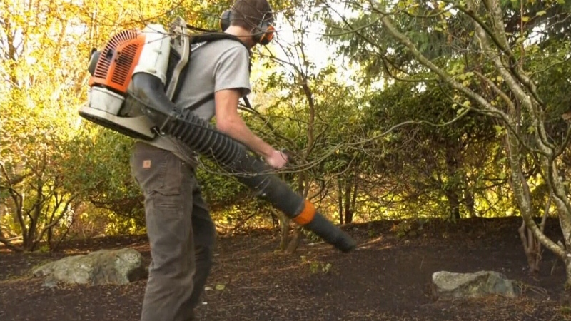Oak Bay considers banning gas-powered leaf blowers