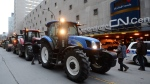 Farmers drive their tractors in front of the Canadian National Railway headquarters to protest the ongoing strike Friday, November 22, 2019 in Montreal.THE CANADIAN PRESS/Ryan Remiorz