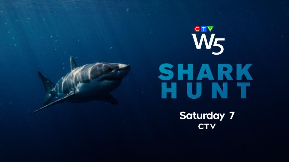 W5: Shark Hunt Sat 7 CTV