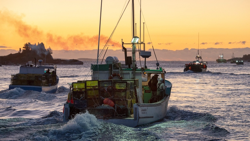 Fishing boats, loaded with traps, head from port in West Dover, N.S. on Tuesday, Nov. 26, 2019 as the lobster season on Nova Scotia's South Shore begins after a one-day weather delay. (THE CANADIAN PRESS/Andrew Vaughan)