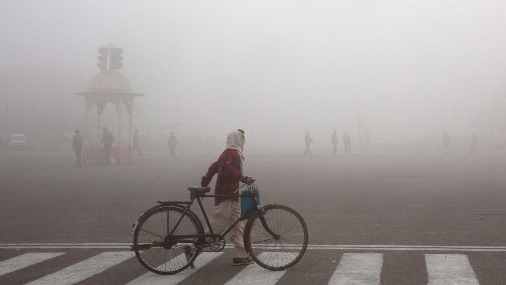 Fog in Indiia
