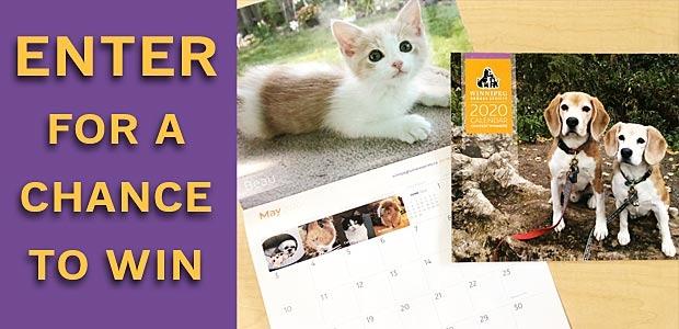 WHS 2020 Calendar Banner
