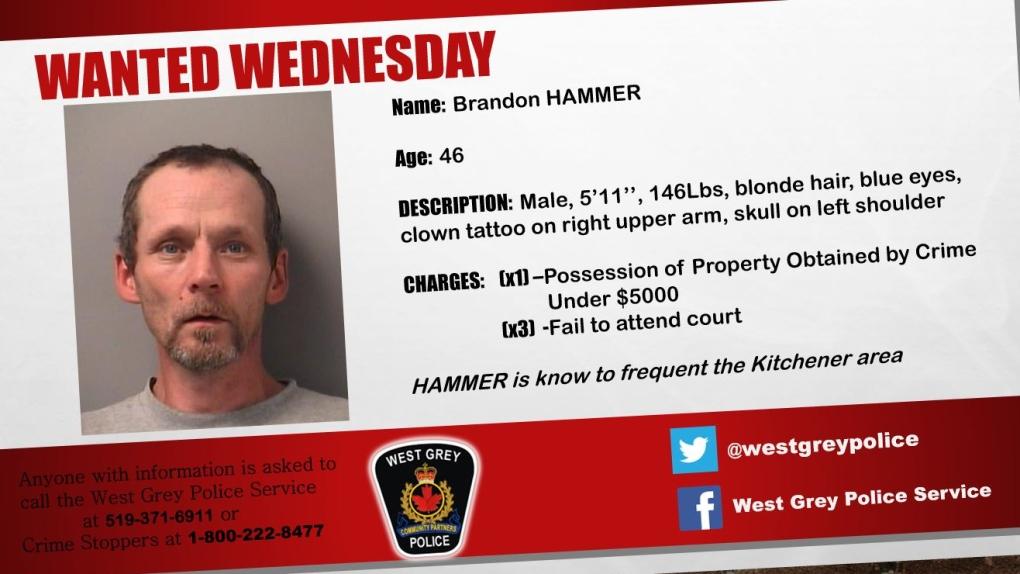 Brandon Hammer