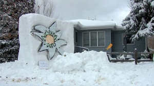 After nearly every snowstorm, a Denver man creates elaborate snow sculptures in his front yard. (KDVR/KWGN)