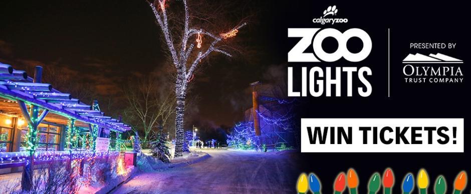 Zoolights-Header-970x400