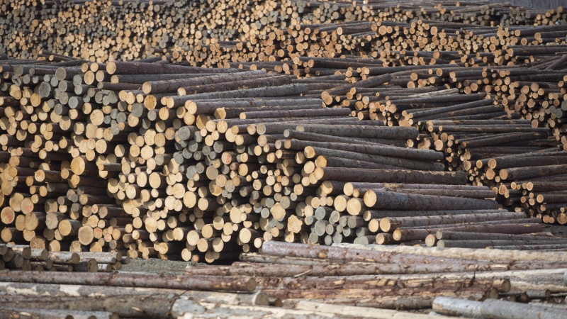 Softwood lumber is pictured at Tolko Industries in Heffley Creek, B.C., Sunday, April, 1, 2018. (THE CANADIAN PRESS / Jonathan Hayward)