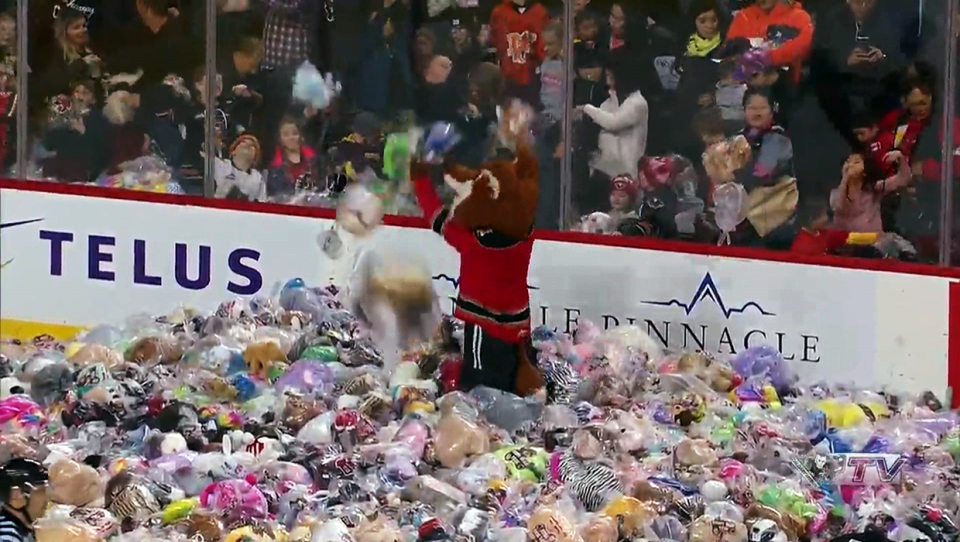 25,000 teddy bears rained down on the ice Sunday at the Hitmen game at the Saddledome
