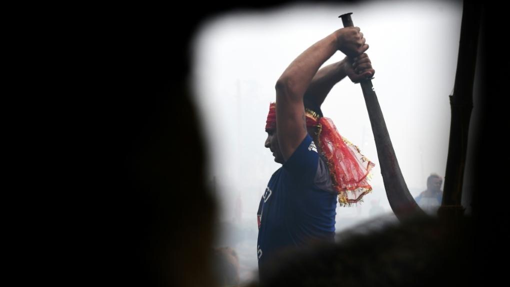 Nepal's mass animal slaughter begins despite outcry