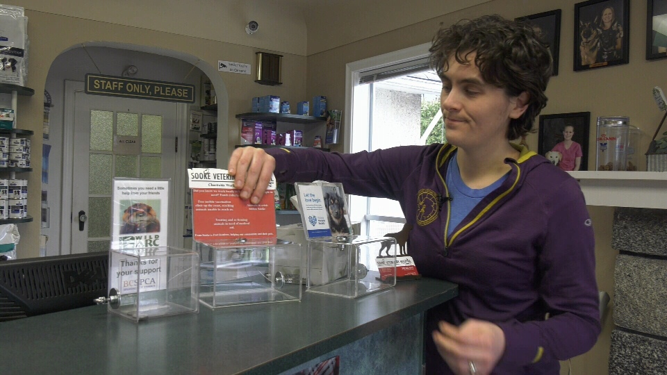 Sooke veterinarian Deborah Lambert is pictured with donation boxes similar to the one stolen: Dec. 3, 2019 (CTV News)