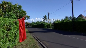 In this image from video, a red flag hangs outside homes of residents who have not been vaccinated in Apia, Samoa, Thursday, Dec. 5, 2019. (TVNZ via AP)