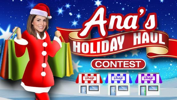 Ana's Holiday Haul Header 2