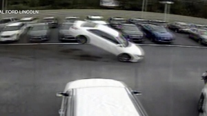 Car flies into car dealership