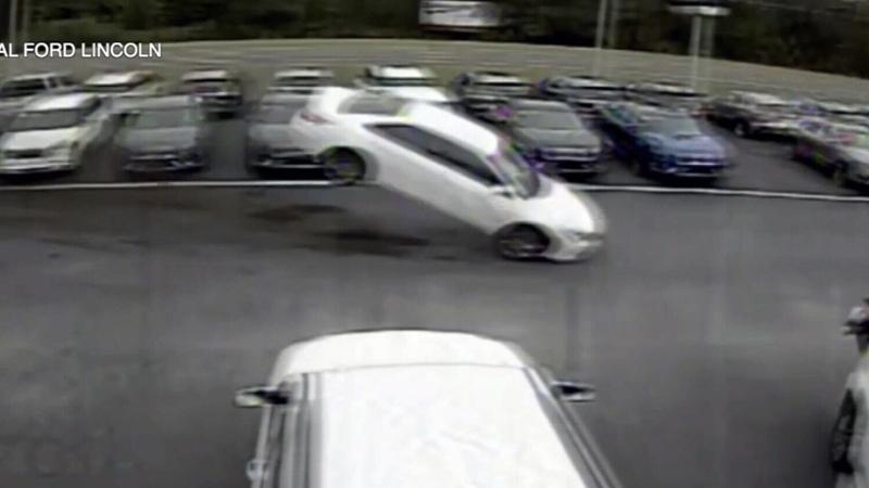 Car flies into car dealership