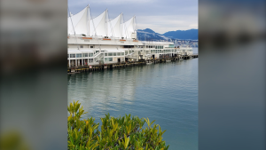 """A great day in Vancouver"" captured by Weather Watch app user Trevor Kozlow in November 2019."