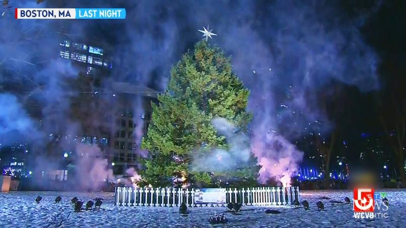 Nova Scotia tree lights up Boston sky