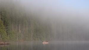 A foggy morning on Buntzen Lake captured by Amanda Harris.