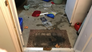 The bear left a mess in the Marr family's carport, including a poop on their doorstep. (CTV News Vancouver Island)