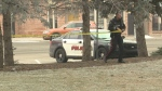 A Lethbridge Police Commission has recommended the creation of a new unit to reduce violence and disorder, and improve public safety in Lethbridge