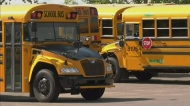 Public school board considers hiking bus fees