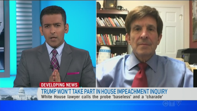 Allan Lichtman on impeachment articles