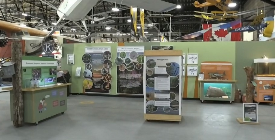 New invasive species exhibit in the north