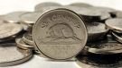 Nickels are shown in a photo from The Canadian Press. (Graeme Roy)
