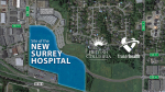 The site of the new Surrey hospital is shown in a graphic from the province.