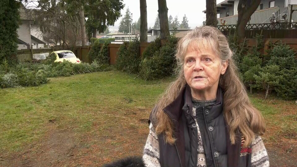 Judy Gogo, 71, says her South Nanaimo home was ransacked on Saturday: (CTV News)