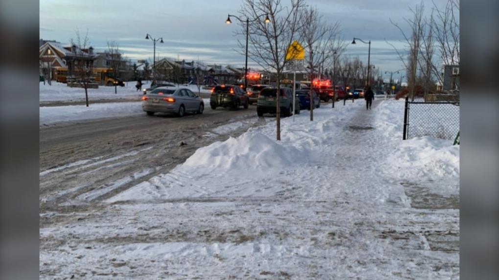Auburn Bay pedestrian hit