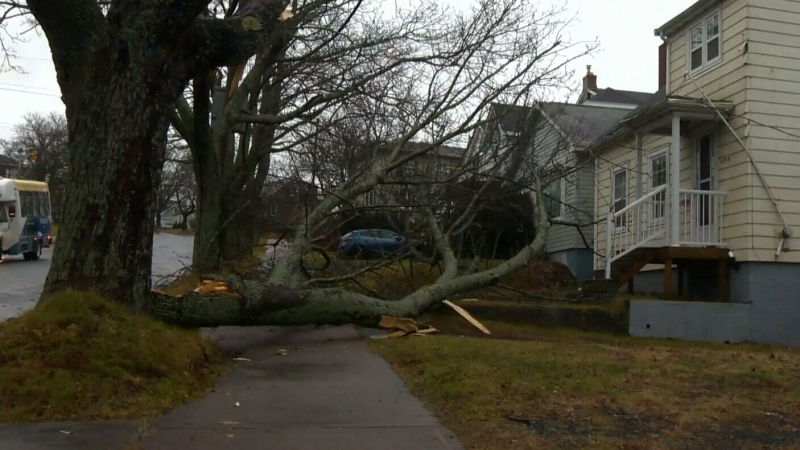 Wild weather prompts widespread power outages