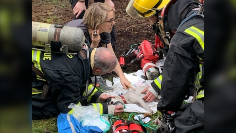Firefighters, paramedics and local veterinarians rushed to the scene of a house fire to assist animals who were trapped in the smoking home. (Nanaimo Fire and Rescue)