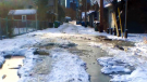 A Sunnyside co-op can't get the city to fix its rutted back alley. Kevin Green reports.