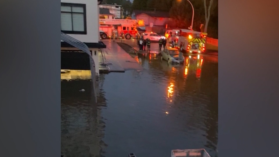 Homes were damaged in Surrey after a broken water main flooded a neighbourhood.