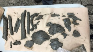Bone fragments were discovered by archeologists near the Black Rock Memorial.