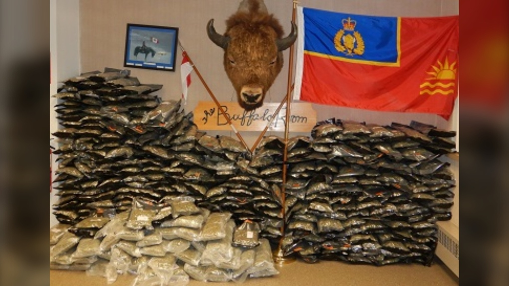 Traffic stop results in seizure of over 160 kg of cannabis in southeastern B.C.