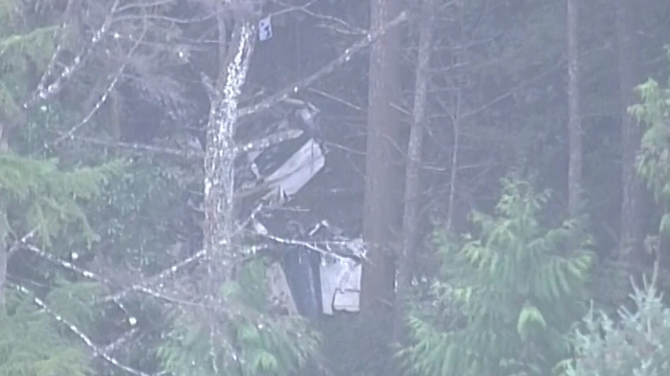 The wreckage of the downed aircraft on Gabriola Island, B.C., on Wednesday, Dec. 11, 2019. (CTV Vancouver Island)