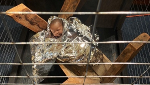 The display outside the Eastminster United Church on Danforth Avenue features an infant Jesus wrapped in a silver blanket inside a cage. (Jane Sanden/Eastminster United Church)