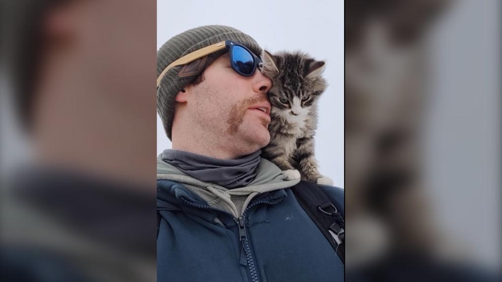 Frostbitten feline randomly rescued by Alberta hiker