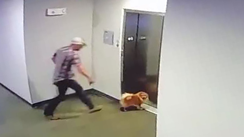 A man saved his neighbor's dog after its leash got caught in an elevator door on Monday and their apartment security cameras captured the rescue. (Courtesy Johnny Mathis via CNN)