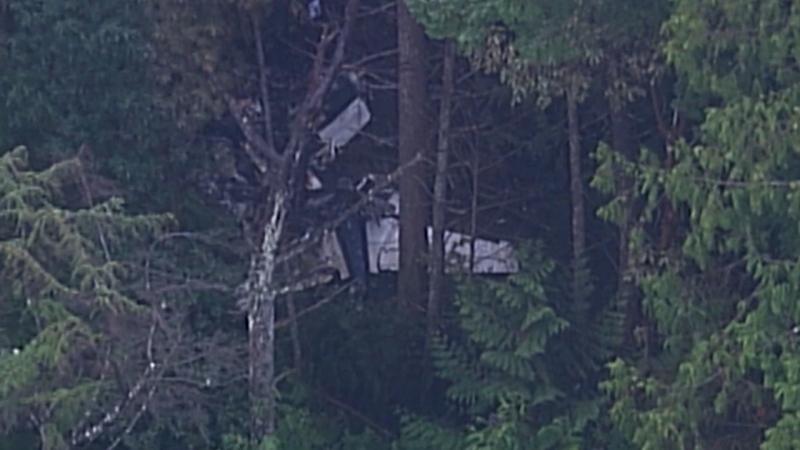 Experienced pilot identified as crash victim