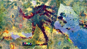 Cave art on the island of Sulawesi, Indonesia, was painted 44,000 years ago and is the oldest known to date. (AFP)