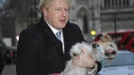 Conservative Party leader Boris Johnson holds his dog Dilyn after voting in Westminster, London, on Dec. 12, 2019. (Alberto Pezzali / AP)
