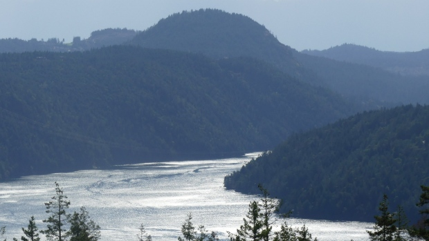 Malahat summit in Brentwood Bay. (Vic Nadaruk photo)