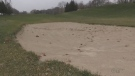 Brantford may sell golf course for more housing