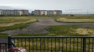 Jared Bourne says it's the city's fault that the wetland behind his southeast home completely dried up.