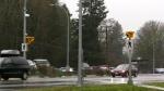 Teen struck on road in front of Sooke school
