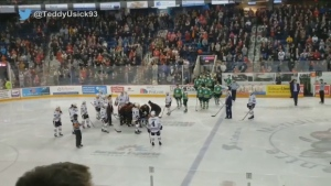 A goalie for the Niagara IceDogs has been injured during an OHL game on Thursday night. (Twitter/TeddyUsick93)