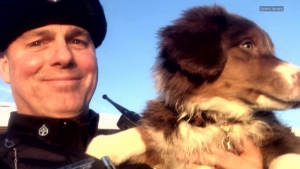 State trooper uses drone to find lost puppy