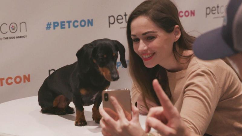 Instagram dogs unite in New York