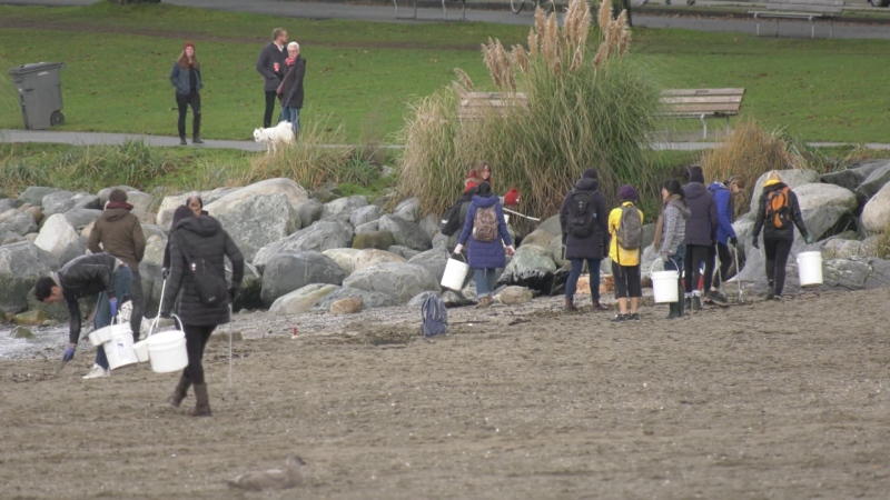 Volunteers join holiday-themed beach clean-up